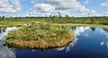 Estonia Endla Nature Reserve 04.jpg