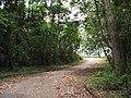 Estrada sem saída. - panoramio.jpg