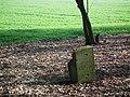 Evangelical cemetery in Tryl (6).jpg