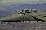 F-16 Farewell 131107-F-RF302-486.jpg