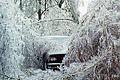 FEMA - 1015 - Photograph by John Ferguson taken on 01-25-1998 in New York.jpg