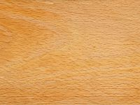 Fagus sylvatica wood tangent section 1 beentree.jpg