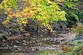 Fall Foliage in Vinco, PA - panoramio (8).jpg