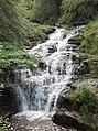 Falls of Ness - geograph.org.uk - 204019.jpg