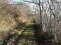 Fanlac chemin près Auberoche.JPG