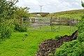 Farm fencing on disused railway - geograph.org.uk - 1396825.jpg