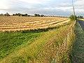 Farmland by Pathhead - geograph.org.uk - 537223.jpg