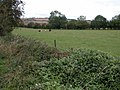 Farmland to the north of Shipton - geograph.org.uk - 243293.jpg