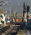 Ferrosur Roca Locomotive.jpg