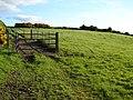 Field on Holywood Road - geograph.org.uk - 1884712.jpg