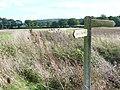 Fields by Blackbrook Farm - geograph.org.uk - 255077.jpg