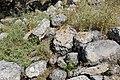 Fieldstones in Bayt Nattif - 1.jpg