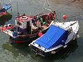 Fishing boats in the Channel Islands.jpg