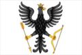 Flag of Albazinsky (Skovorodinsky rayon).png