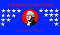 Flag of East Washington.png