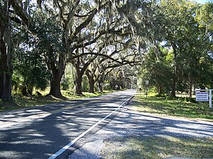 National Register of Historic Places listings in Citrus County, Florida - Image: Floral City Hist Dist Street 01