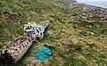 Flotsam near North Linkataing - geograph.org.uk - 1274529.jpg