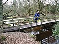 Footbridge over Dockens Water, New Forest - geograph.org.uk - 333181.jpg