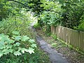 Footpath, East Chisenbury - geograph.org.uk - 1427283.jpg