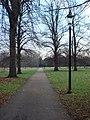 Footpath, Hyde Park - geograph.org.uk - 1029767.jpg