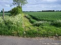 Footpath - geograph.org.uk - 438363.jpg