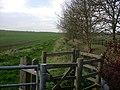 Footpath along Bin Brook - geograph.org.uk - 1055524.jpg