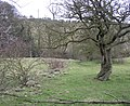 Footpath at SE043472, Silsden - geograph.org.uk - 140407.jpg