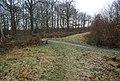 Footpath junction in Blean Woods - geograph.org.uk - 1132461.jpg