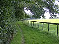 Footpath near Neal's Farm, Rotherfield Peppard, Oxfordshire.jpg