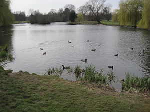 Foots Cray Meadows - Image: Foots Cray Meadows lake