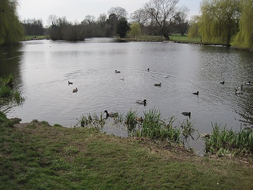 Foots Cray Meadows lake