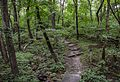 Fort Ridgely State Park - Trails - Minnesota (27753345813).jpg