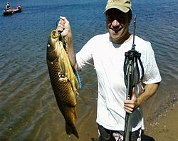 Spearfishing - Wikipedia