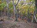 Fujiwaracho Yamaguchi, Inabe, Mie Prefecture 511-0524, Japan - panoramio (2).jpg