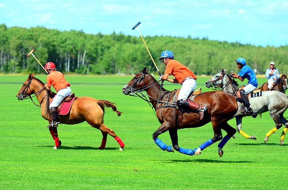 Full gallop polo