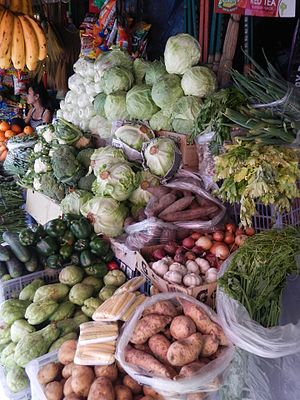 Benguet - Benguet is a major producer of highland vegetables in the country.