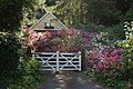 Garden Near Bonchurch - geograph.org.uk - 1459528.jpg