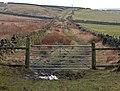 Gate across Water Stalls Road - geograph.org.uk - 274139.jpg