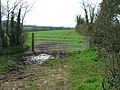 Gate on the Byway - geograph.org.uk - 1800951.jpg