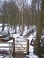 Gate on the High Weald Landscape Trail - geograph.org.uk - 1710176.jpg