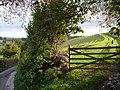 Gateway and track beside Hatherleigh Lane - geograph.org.uk - 256496.jpg