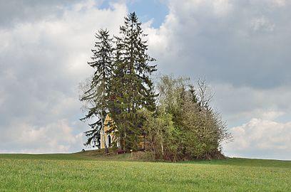 Gedächtniskapelle Waisenegg 02.jpg
