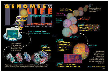 An illustration of the systems approach to biology Genomics GTL Pictorial Program.jpg