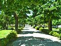 Giardini Pubblici di Carassai.jpg