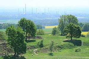 Gmina Leśnica - Nature and factory
