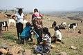 Goat Project Ulundi.jpg