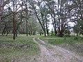 Gorodishchensky District, Volgograd Oblast, Russia - panoramio (31).jpg