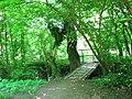 Goule du ruisseau - panoramio.jpg