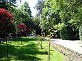 Grădina Publică municipiul Târgu Jiu img-07008.jpg