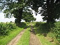 Green Hills Lane - geograph.org.uk - 499655.jpg
